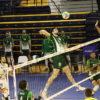 copa del rey de voleibol